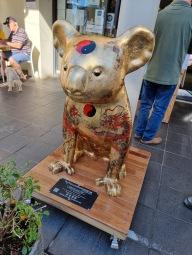 Korean Koala