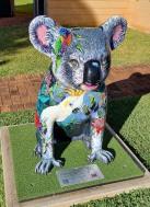 Cocky Koala