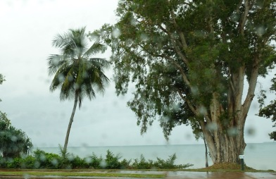 Ingham to Cooktown wet and windy