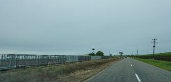 Sugarcane Wagons