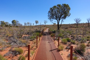 Walk to the Lookout