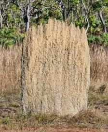 Magnetic Termites