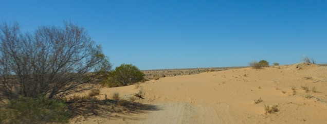 Dune covering the track