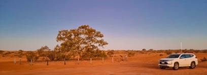 Sunset, Lone Gum Tree and Mitsubishi